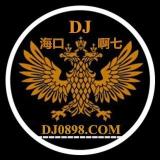 海口DJ啊七-精心打造上头中英文串烧(海伦dj音乐网第一届原创串烧大赛作品)