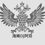 海南Dj阿双-深水炸弹之蹦迪大碟