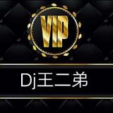 Dj王二弟-VIP私人用曲灵魂鼓漂漂漂